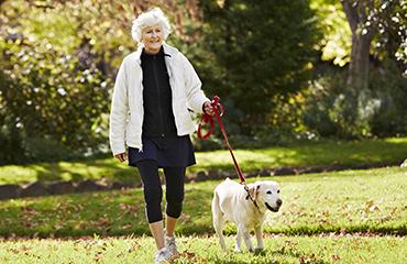 Exercising Your Dog | Glen Iris Vet